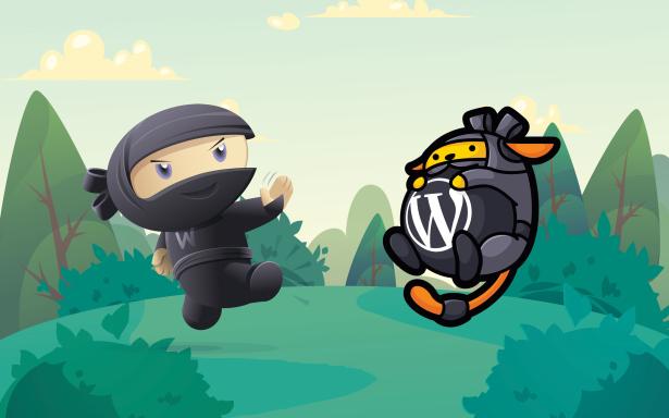 woo&wapuu